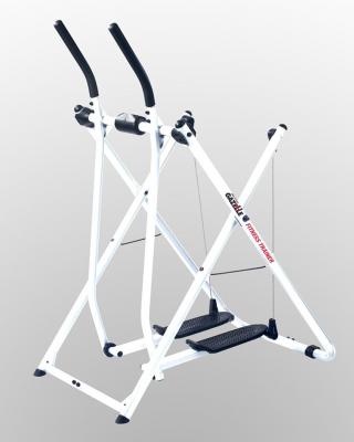 gazelle-fitness-trainer